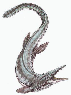 ティロサウルス.jpg